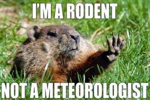 groundhog_meme